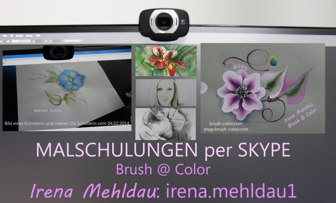 One Stroke Lifeschulung über Skype